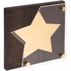 Награда Asteri Dark Gold