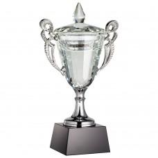 Кубок Victorious, малый